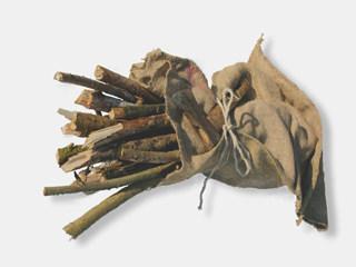 Holzdiebstahl
