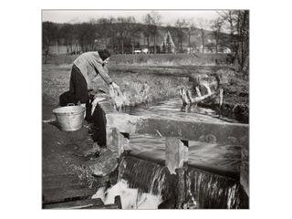 Waschen am Laibach