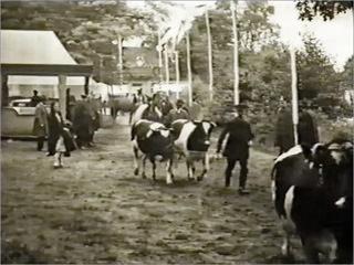 """Film """"Tierschaufest 1932"""""""